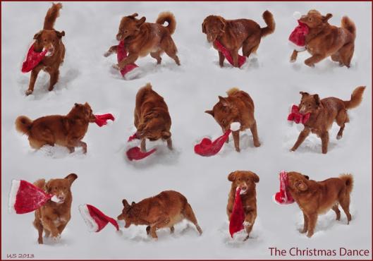 Weihnachtskarte-2013quer